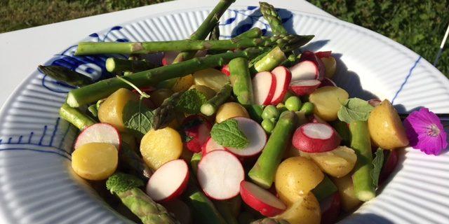 Salat med kartofler, radiser, ærter og asparges